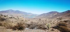 """El campo se resiste a morir: """"Gremio agrícola pide urgencia para construcción de plantas"""